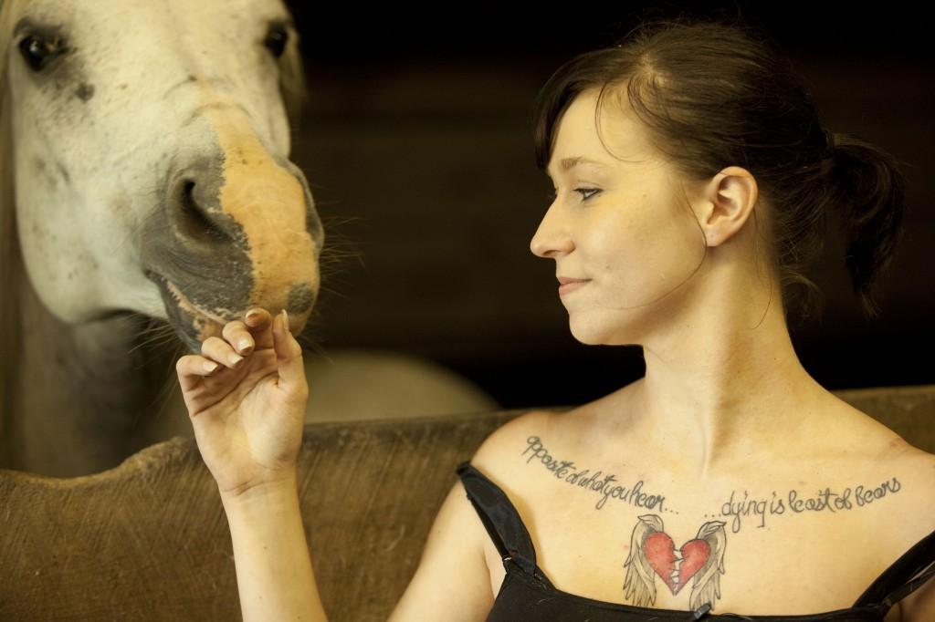 fjv_horsebarn_148